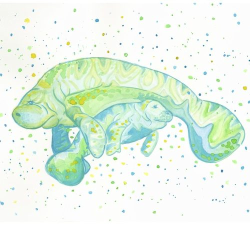 blue-and-lime-manatee-pair