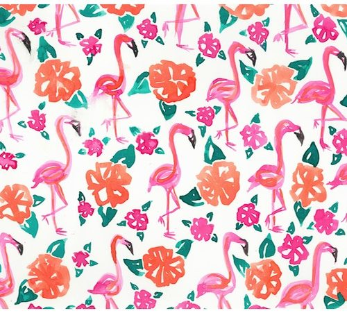 Pink and Orange Flamingo Print