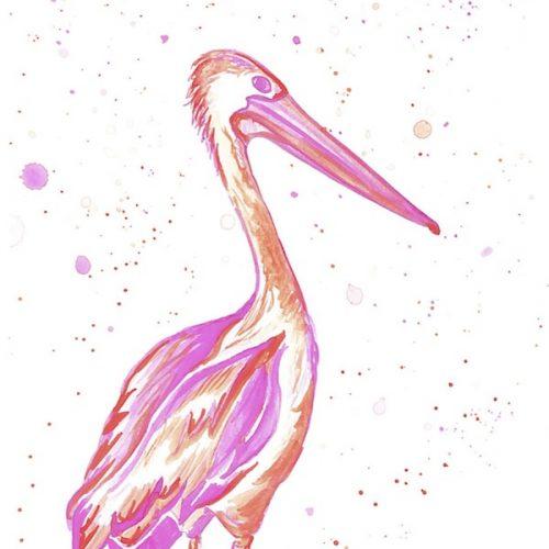 Pink and Orange Pelican