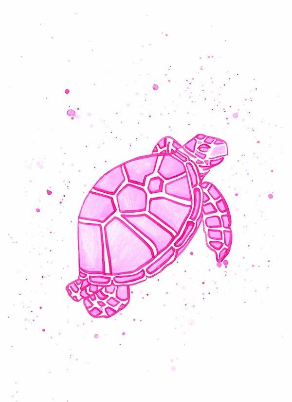 single pink turtle go coastal