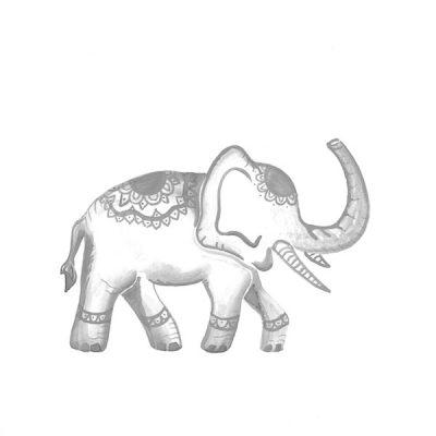 grey elephant