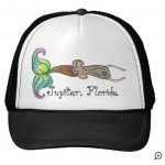 black hat brown hair rainbow tail mermaid